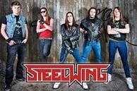 Steelwing