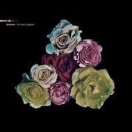 Deftones - The Vinyl Collection