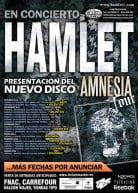 Hamlet Tour Amnesia